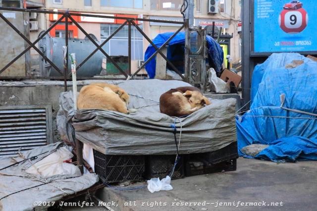 Let sleeping dogs lie.